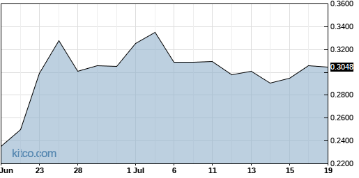 ENZN 1-Month Chart