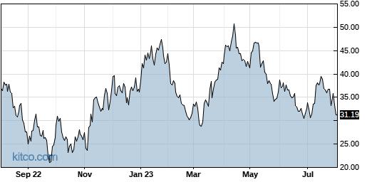 JNUG 1-Year Chart